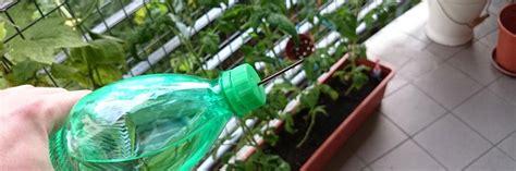 Pflanzen Während Urlaub Bewässern by Herausragende Blumen Gie 223 En Im Urlaub F 252 R Tipps Wie Sie