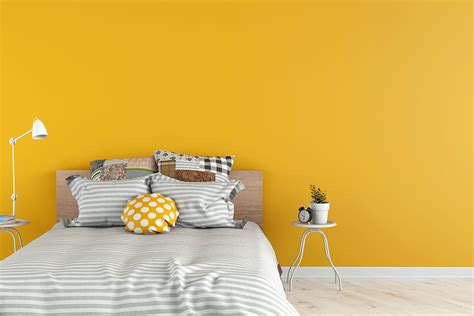 Wand Gelb Streichen by Colors That Compliment Yellow Wow 1 Day Painting