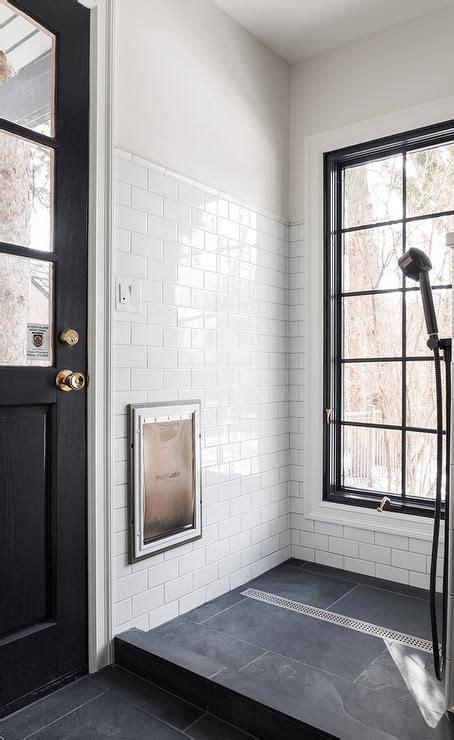 Black  White Dog Shower   Contemporary Mudroom