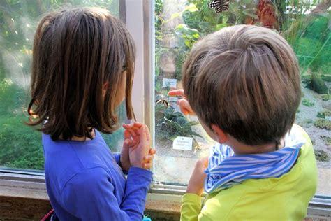 Botanischer Garten Augsburg Kindergeburtstag by Kimapa Das Familienportal F 252 R M 252 Nchen Und Umgebung