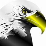 Eagle Bald Svg Clip Icon Clipart 1024