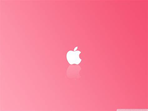 fondos  whatsapp patada de caballo pink wallpaper