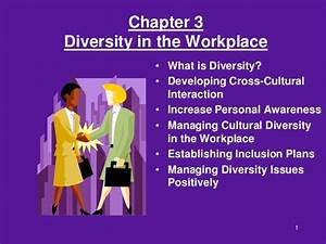 Chapter03 diversity in the workplace.