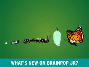 Insects make their Debut on BrainPOP Jr.