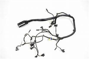 2010 Bmw F800gs F650gs Engine Wiring Harness Wire Loom