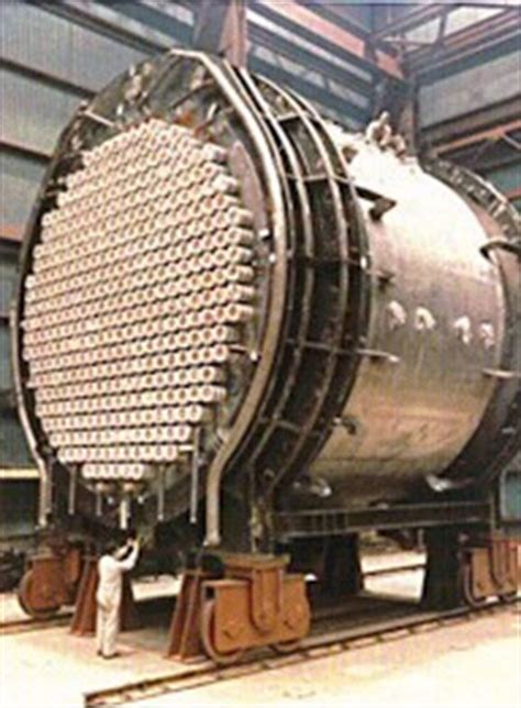 candu reactorfuelshutdown system specifics