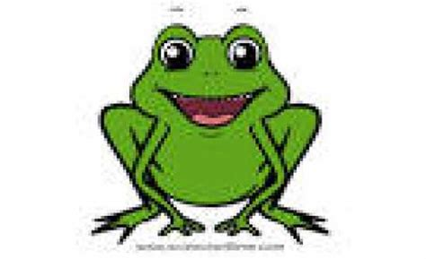 frog flashcards  proprofs