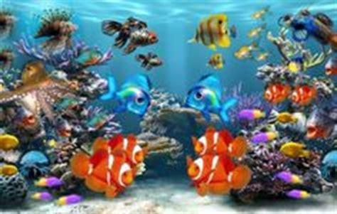 image de fond d ecran qui bouge fond d 233 cran de poisson qui bouge gratuit wallpapers