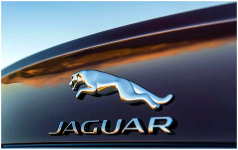 jaguar logo meaning and history latest models world cars brands