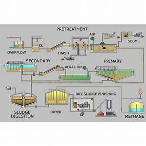 Wastewater Bioremediation To Reuse As Drinking Water