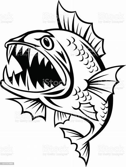 Fish Angry Vector Cartoon Background Mean Drawing