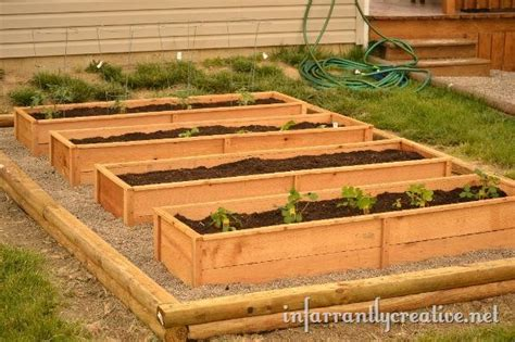 planting a raised garden bed infarrantly creative