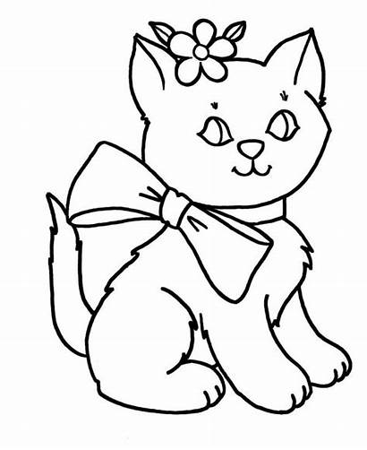 Coloring Cat Kitty Lovely Outfit