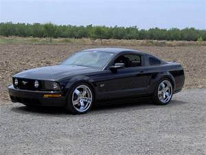 juggalo09173 2006 Ford Mustang Specs, Photos, Modification Info at CarDomain