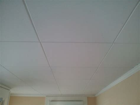 how to paint asbestos ceiling tiles robinson house