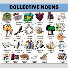 25+ Bästa Collective Nouns Idéerna På Pinterest  Trivia, Grammatik Och Engelskt Ordförråd