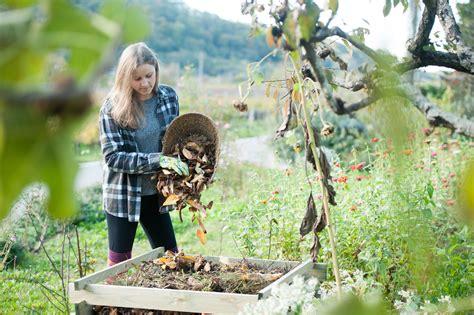 compost  give black gold   garden