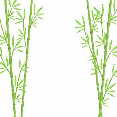 Bamboo Background Illustration Vector Trackbacks Currently Closed