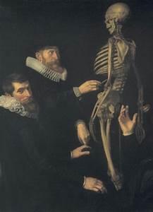 Detail Of The Anatomy Lesson Of Dr  Sebastian Egbertsz  By