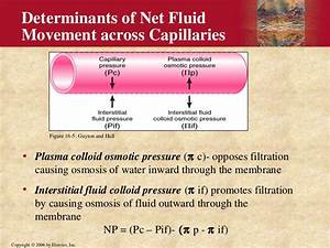 Interstitial Fluid Formation And Edema By Dr  Mudassar Ali Roomi