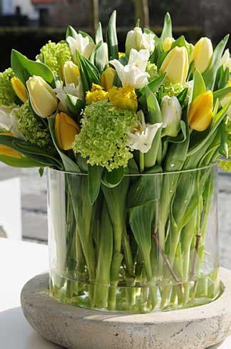 Welche Vase Für Tulpen by Fleurop Tulpen Hier Erfahren Sie Alles 252 Ber Blumen