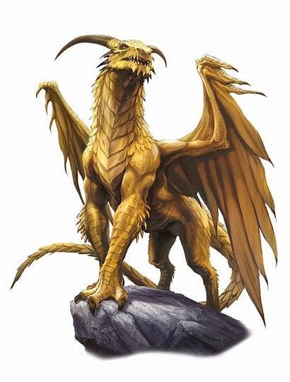 Dragon Gold Ancient Pathfinder Bestiary Dnd Dragons