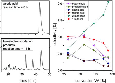 electrochemistry   generation  renewable chemicals electrochemical conversion