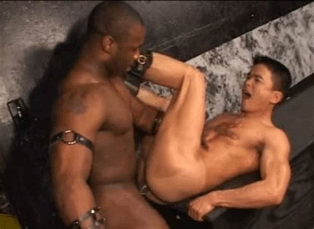 #The #Adventures #Of #A #Redneck #Cock #Sucking #Dildo #Fist #Pig #Celebrate #Black #History #Month