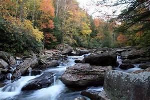 Forestwander, Nature, Photography, Featured, In, Mountain, Highlands, Traveler, Magazine