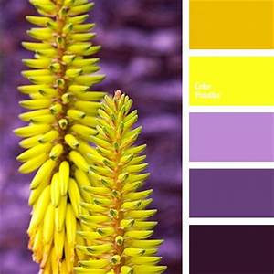 Best 20 Aubergine Colour ideas on Pinterest