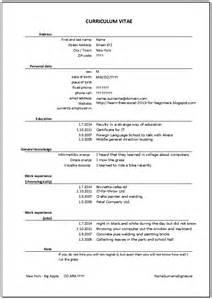 job resume exle pdf self education learn free excel 2013 for beginners resume or cv curriculum vitae in excel