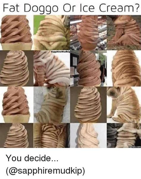 Fat Dog Meme - fat dog go or ice cream sapphinemudei you decide meme on me me