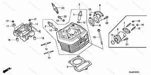 Honda Motorcycle 2004 Oem Parts Diagram For Cylinder Head