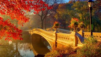Central Park Fall Bridge Wallpapers Bow Autumn