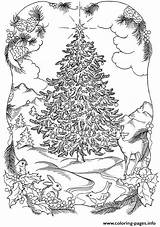 Coloring Tree Nature Christmas Adults Pages Printable sketch template
