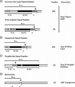 General Properties And Classification Of S  Aureus Signal