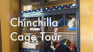Chinchilla Cage Tour! - YouTube