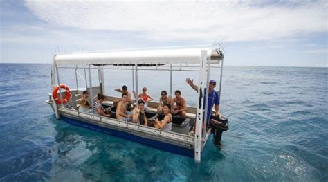 Glass Bottom Boat Tours Airlie Beach by Luxury Reef And Rainforest Getaway 2 Day How To Scuba Dive