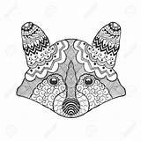 Raccoon Tribal Head Coloring Caves Drawn Doodle Drawing Ethnic Animal Hand Patterned Bear Vector Drawings Designlooter Sketch Getdrawings Illustration sketch template