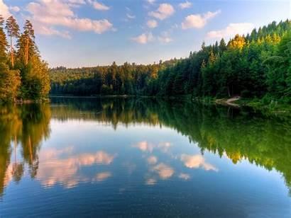 River Forest Landscape Wallpapers