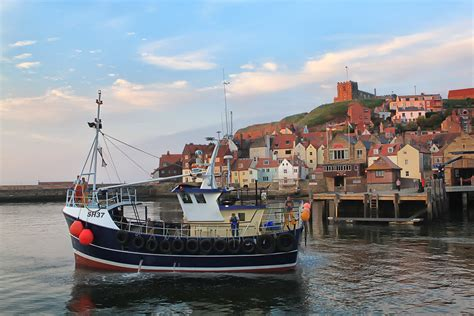commercial whelk fishing   whitby real whitby