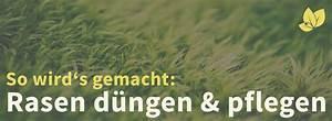 Rasen Richtig Düngen : rasen d ngen ratgeber 2018 so wird 39 s gemacht laubgebl ~ Frokenaadalensverden.com Haus und Dekorationen