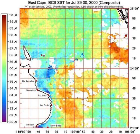 Fishing Boat Sinks In Sea Of Cortez by Terrafin Sea Surface Water Temperature Sst Maps