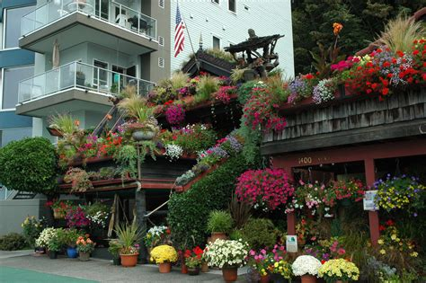 flowers for the house the flower house with condo on alki beach seattle washin flickr