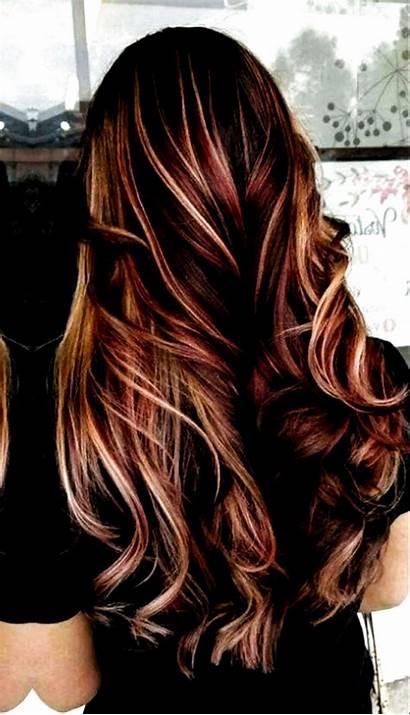 Hair Brunettes Lowlights Brunette Haircuts Trendy Haircolor