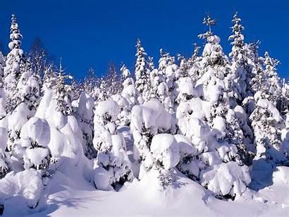 Winter Desktop Backgrounds Wallpapers Snow