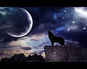[38+] Wolf Full Moon Wallpaper on WallpaperSafari