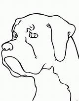 Boxer Coloring Dog Pages Drawing Dogs Easy Line Puppy Printable Chien Colouring Simple Animal Cartoon Face Drawings Draw Imprimer Coloriage sketch template