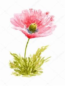 Blumen Bilder Gemalt : mohn blumen aquarell hand gezeichnet und gemalt stockfoto geshaft 11528865 ~ Orissabook.com Haus und Dekorationen