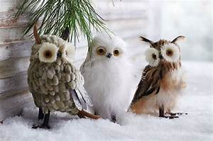 Wise Winter Owls Holiday Decor Ornaments (Set of 3